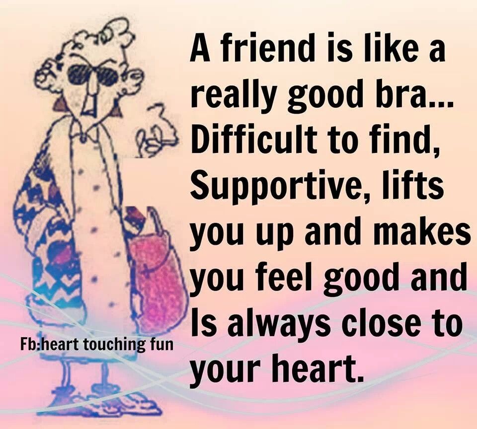 Funny Quotes About Friendship Godly Quotes About Friendship Maxine Quotes On Friendship  Words