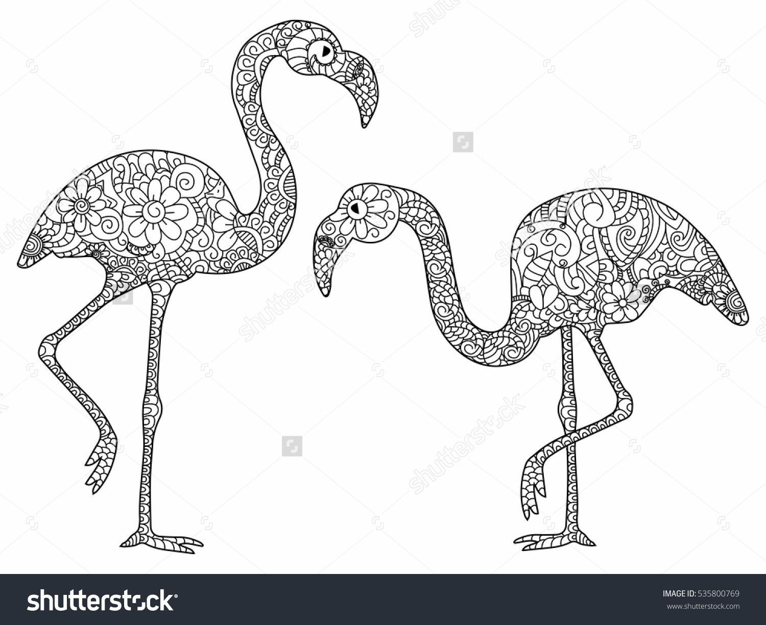 Coloring sheets for adults flamingo - Stock Vector Two Flamingos Book For Adults Vector Adult Coloring Pages