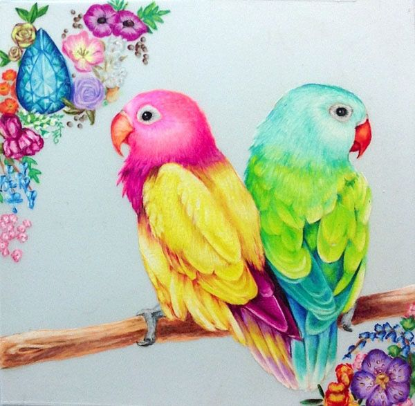 Drawing Birds Colors Tumblr Buscar Con Google Bird Drawings