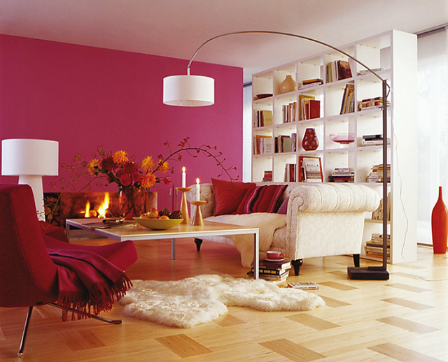 I Love The Colour Scheme White Bookcase Couch And Rug Raspberry Coloured Accent Wall Accessories