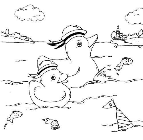 vögel enten im meer zum ausmalen  ausmalen enten