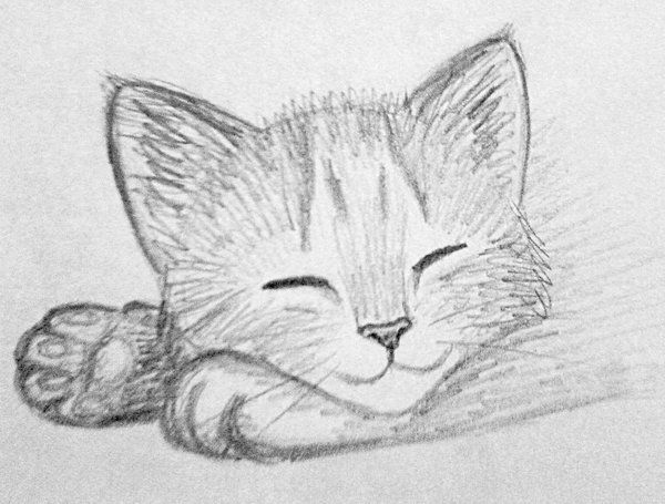 Kitten sketch 3 by kridah deviantart com on deviantart