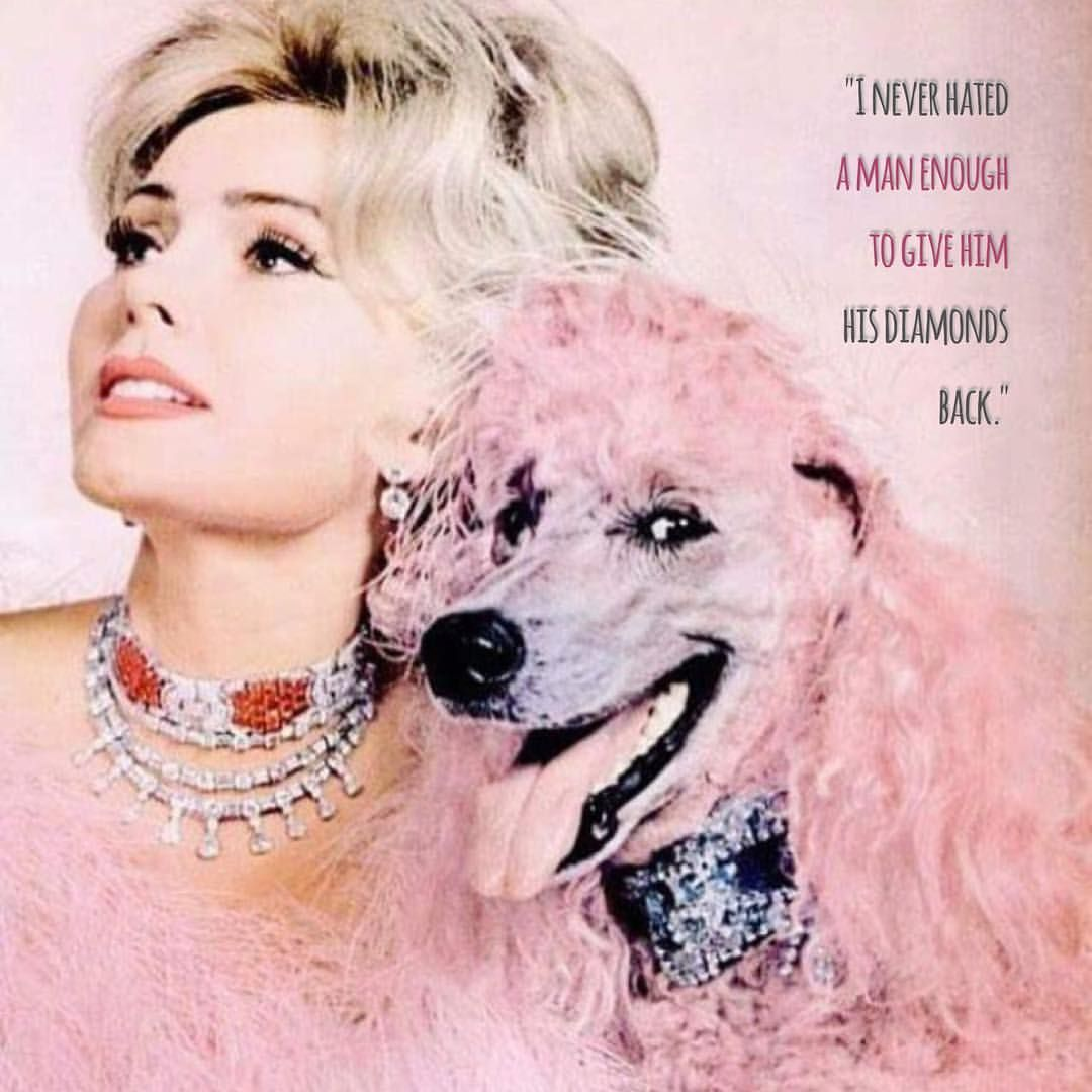 Zsa Zsa Gabor Quotes Candy Minimalpastel Pink Zsa Zsa Gabor Quote With Pink Poodle
