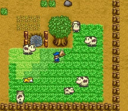 Taking care of the cows in Harvest Moon snes | All things