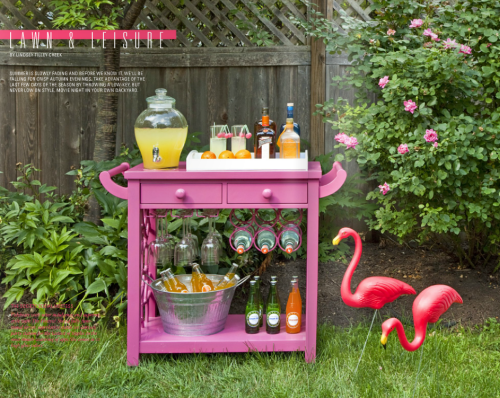 backyard entertaining... with the perfect bar cart by Society Social! #pink