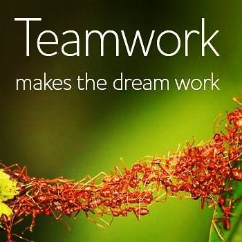 Each single member of the #ywnhnetwork helps us achieve our common #goals.TEAMWORK MATTERS!   Together we can reach beyond our individual strength, compensate for individual weakness with complimentary skills. Let's build something great together. Link to me at www.yourwellnessnhealth.com to connect with me.   #goals #success #teams #teamwork