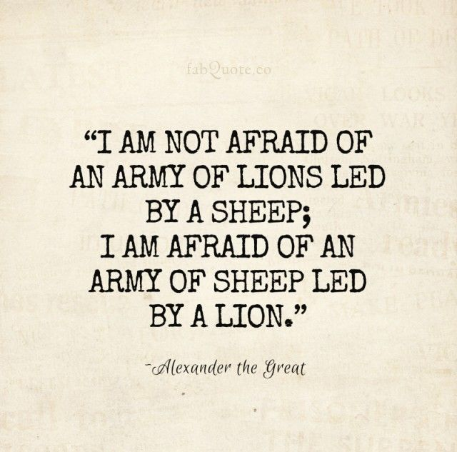 """Famous Quotes On Leadership: Alexander The Great """"Leadership"""" Quote"""
