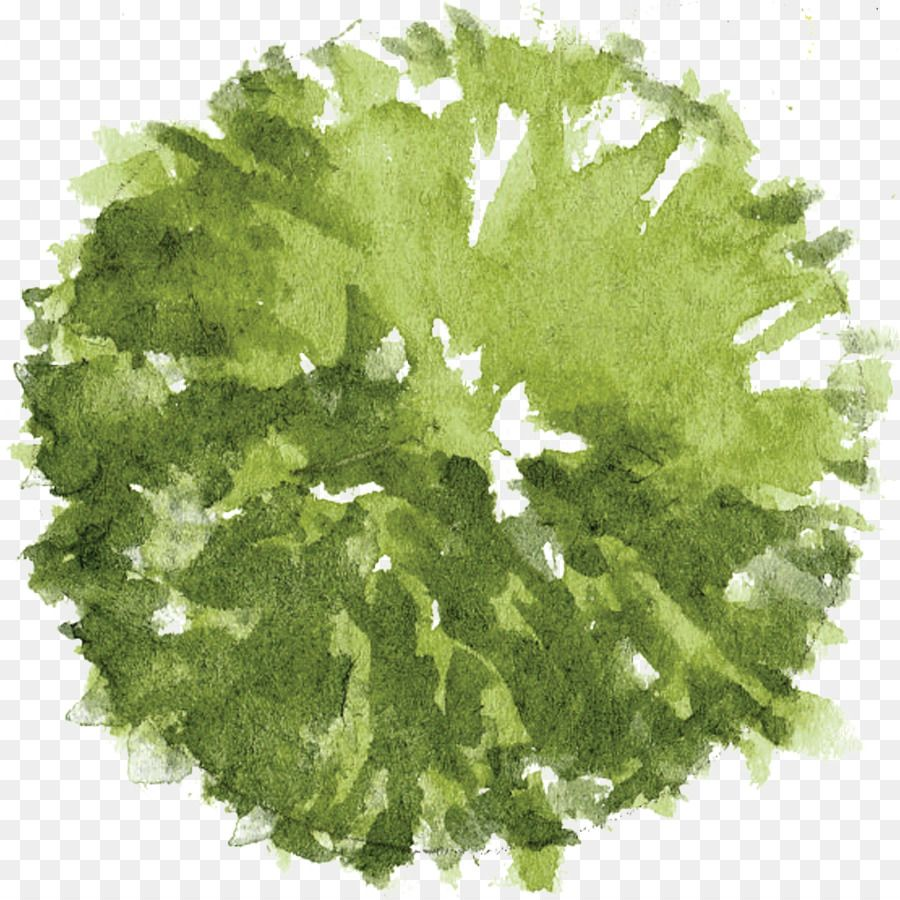 Green Leaf Watercolor - Unlimited Download. cleanpng.com.