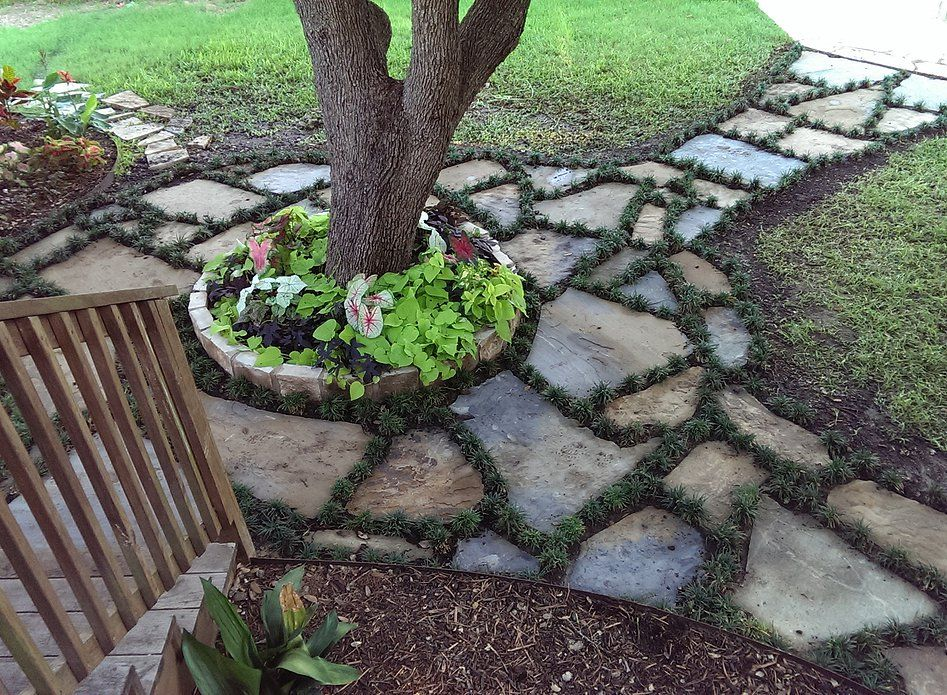 Flagstone Walkway Design Ideas how Flagstone Walkway Edged With Dwarf Mondo Grass