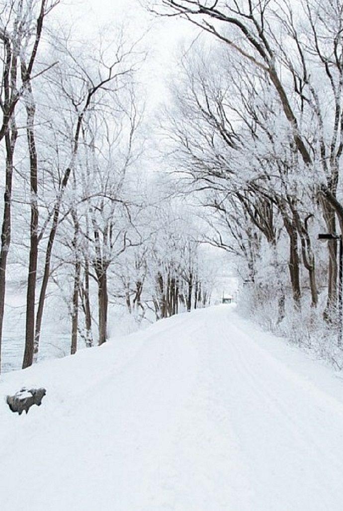10 Winter Activities for Nursing Home Residents   Winter activities ...