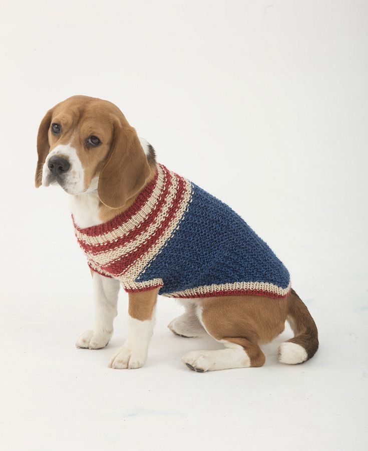 Adorable Knitted Dog Sweater Find The Free Pattern At Loveknitting