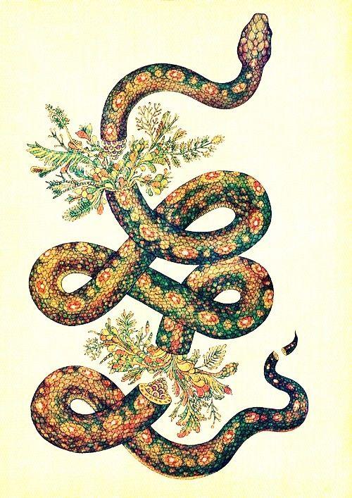 Snake Flowers Particulier En 2018 Pinterest Tatouage Dessin