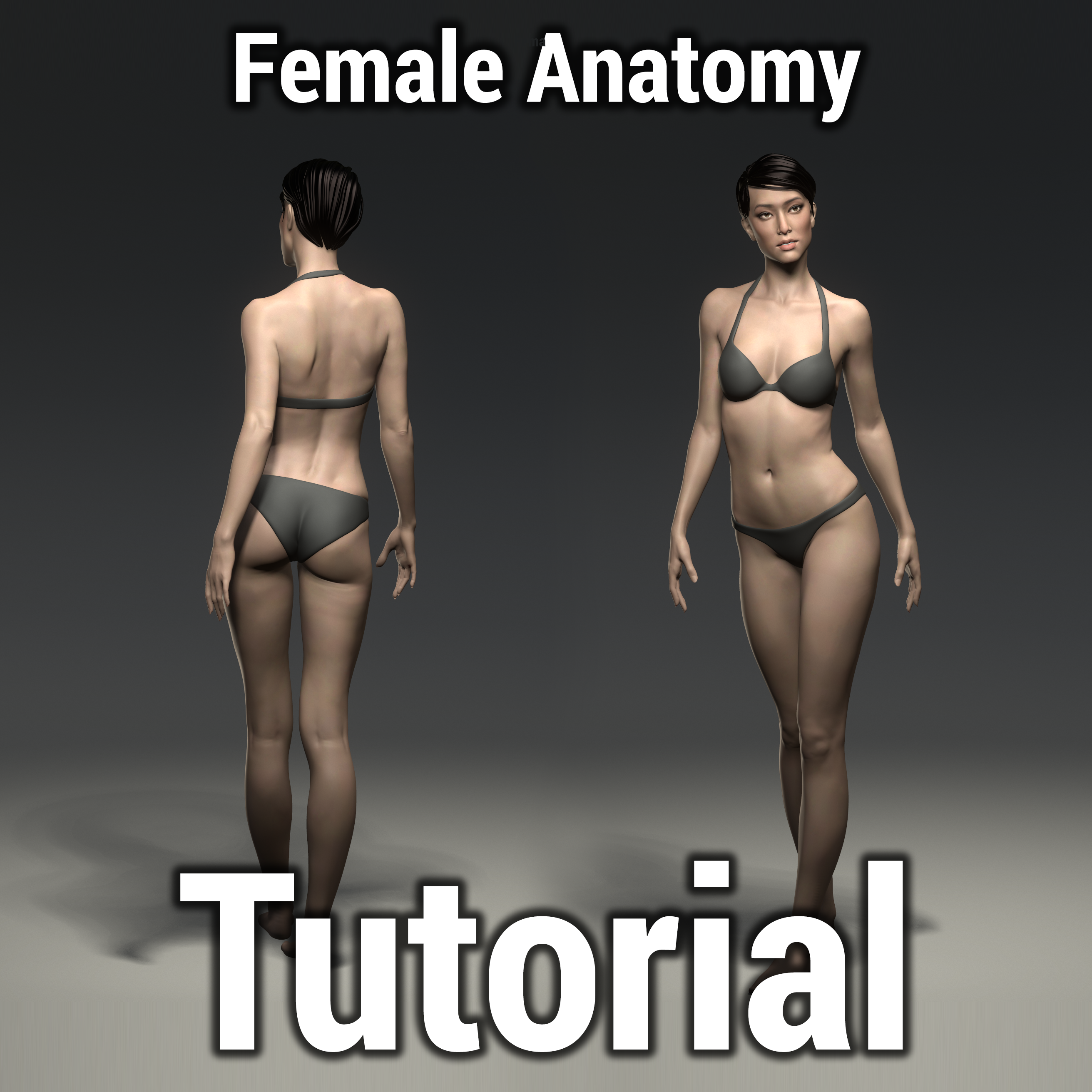 Female Anatomy Tutorial by Donna Urdinov | Realistic | 3D… | Human ...