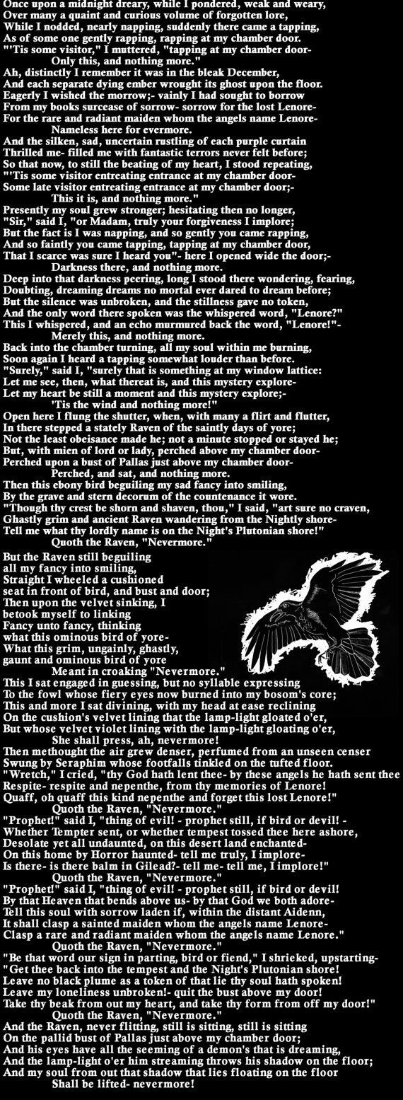 The Raven Book Scarf Edgar Allen Poe Quote Poetry By Allan