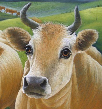 Infinite Photographs Photo Cow