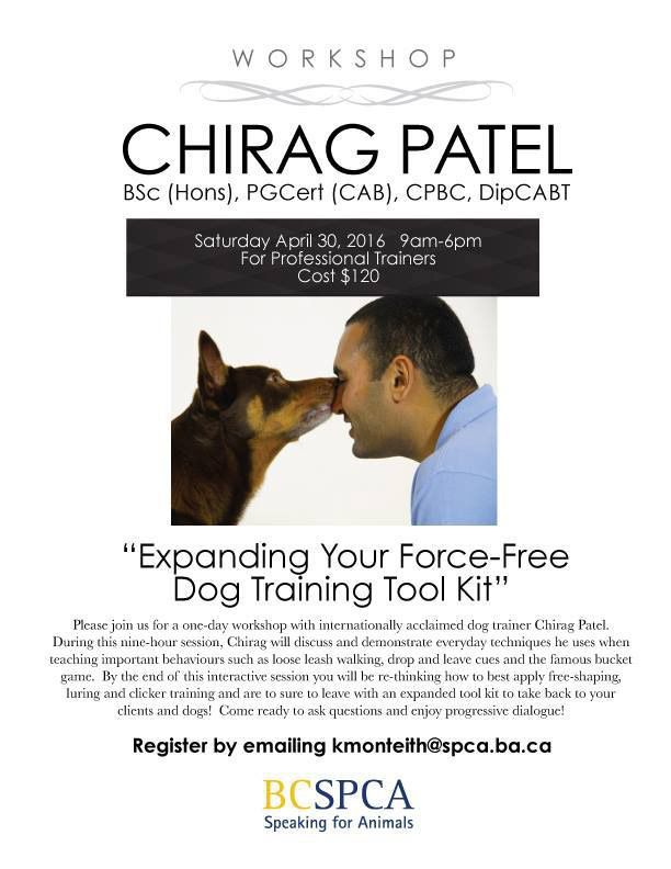 Expanding Your Force Free Dog Training Toolkit With Chirag Patel