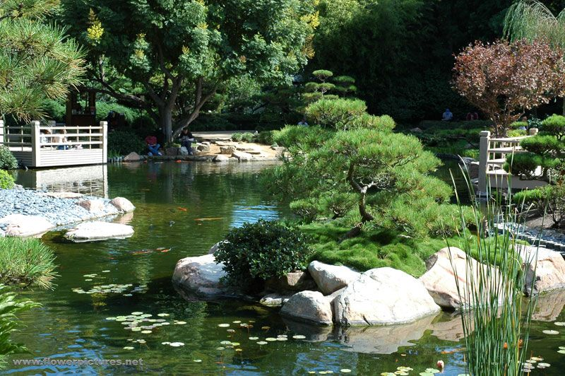 Image detail for Japanese garden at Cal State Long Beach