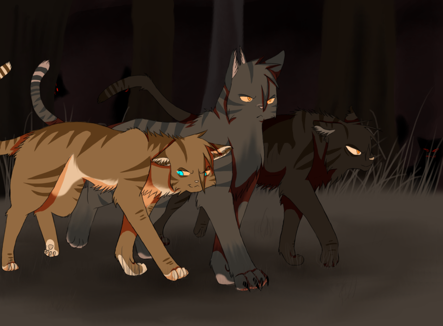 Cats Of The Dark Forest Hawkfrost Tigerstar Brokenstar