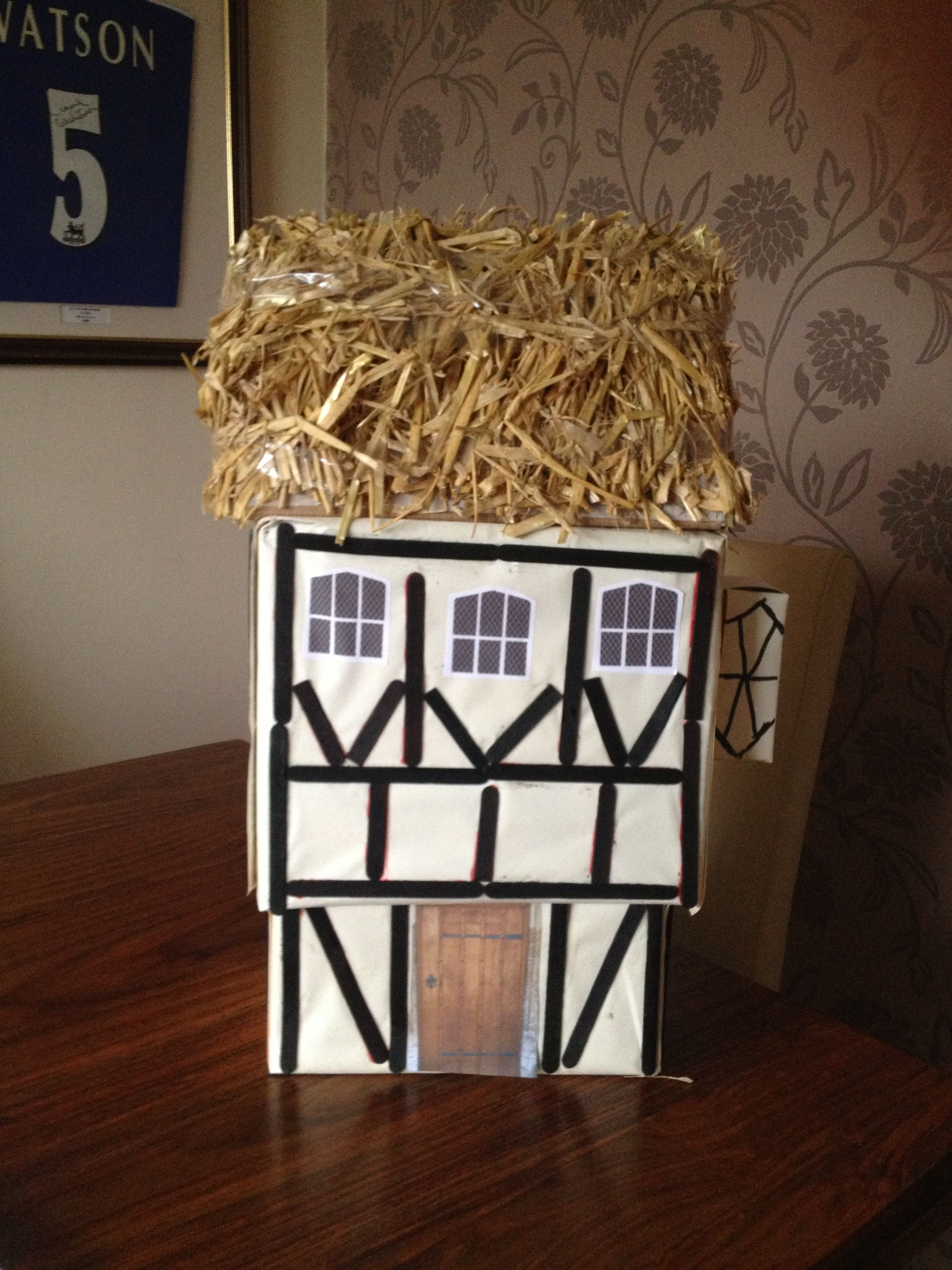 Tudor House Project By Tomas