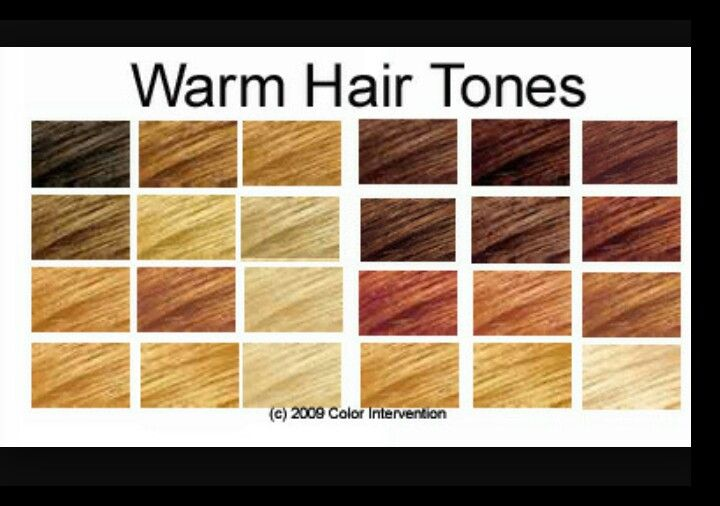 Color Chart With Images Tone Hair Cool Tone Hair Colors Hair
