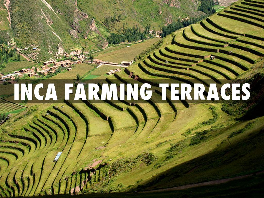 INCA farming terraces