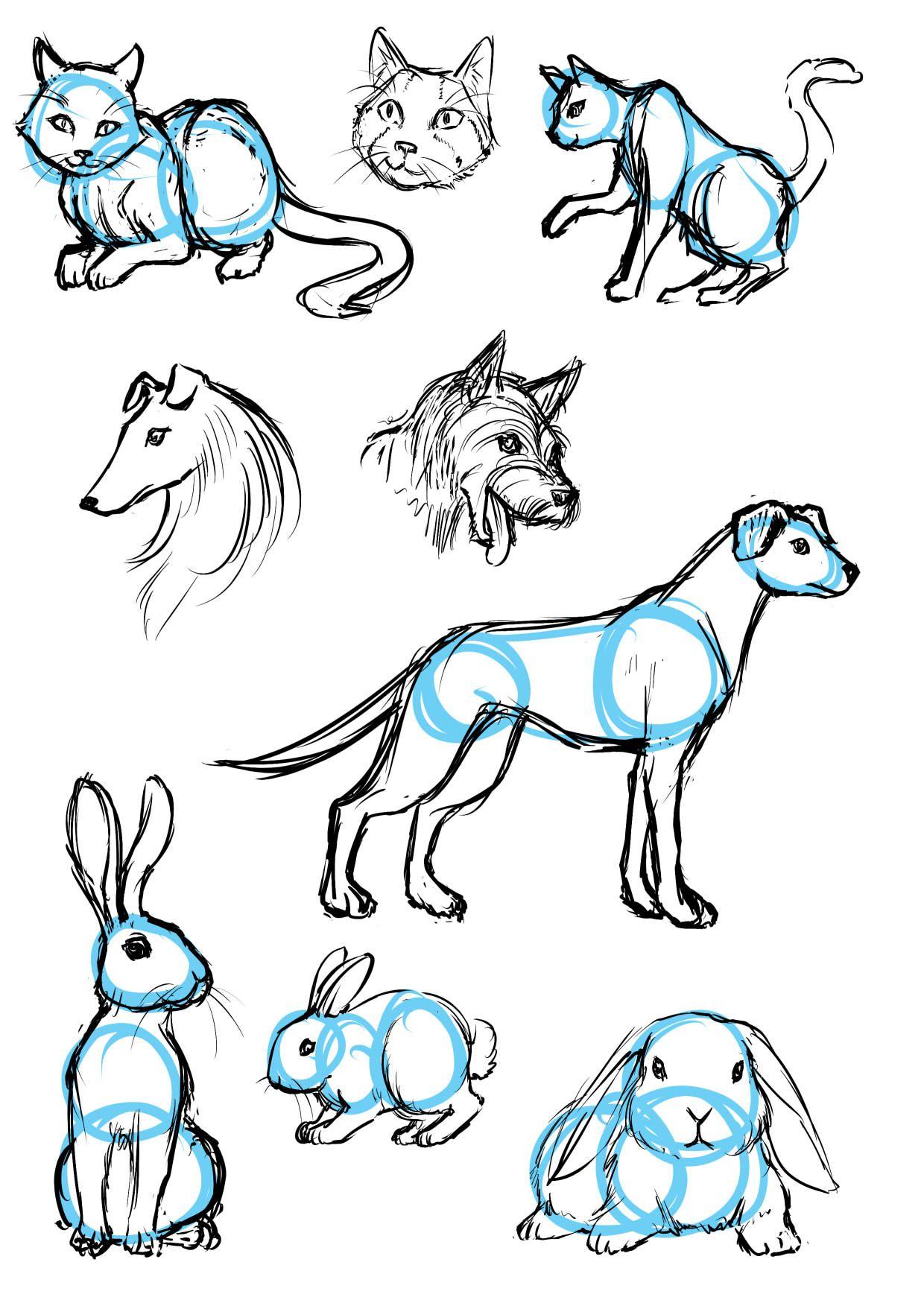 Drawing Animals in Manga Letraset Blog Creative