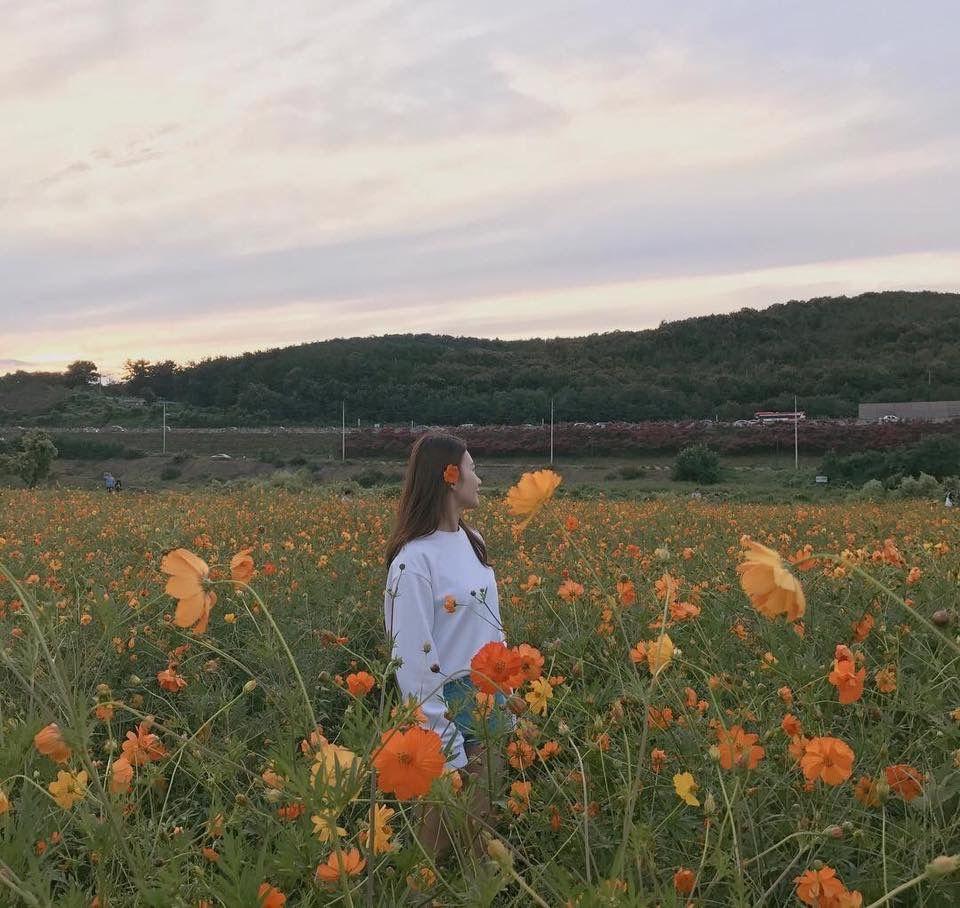 Photo, Green Aesthetic, Nature