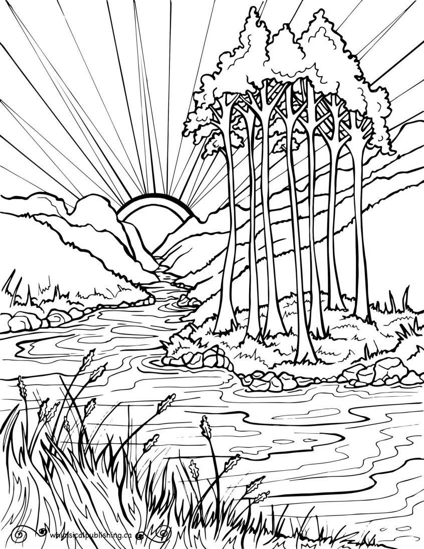 Nature Coloring Books For Adults Coloring Coloring Pages Free Colouring Nature Easy Abstract Coloring Pages Coloring Pages Nature Cartoon Coloring Pages