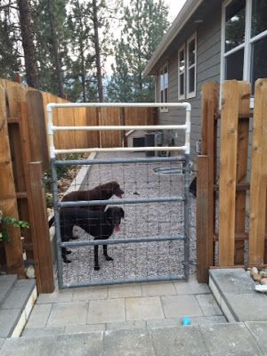 Side Yard Dog Run Our House Projects Pinterest Side