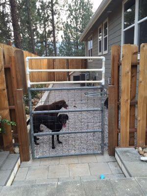 Dog Run | Dog run side yard, Diy dog run, Dog backyard