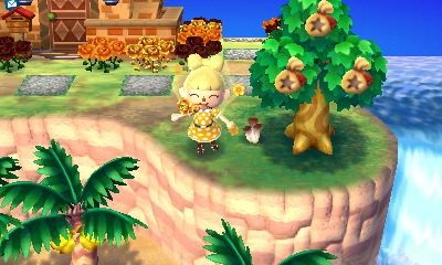 Animal Crossing New Leaf How To Grow A Money Tree