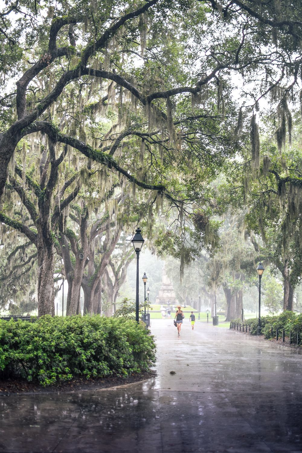 A Rainy Day In New York Bern Smitten With Savannah Where To Stay What To Do What To Eat Forsythpark Savannahgeorgia Savannah Chat Forsyth Park Sleeping Beauty Movie