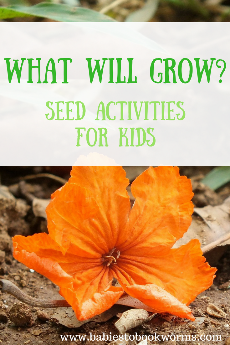 Introduce kids to spring, gardening and plants with educational seed activities and a fun read aloud!   Kid Math | Spring Activities