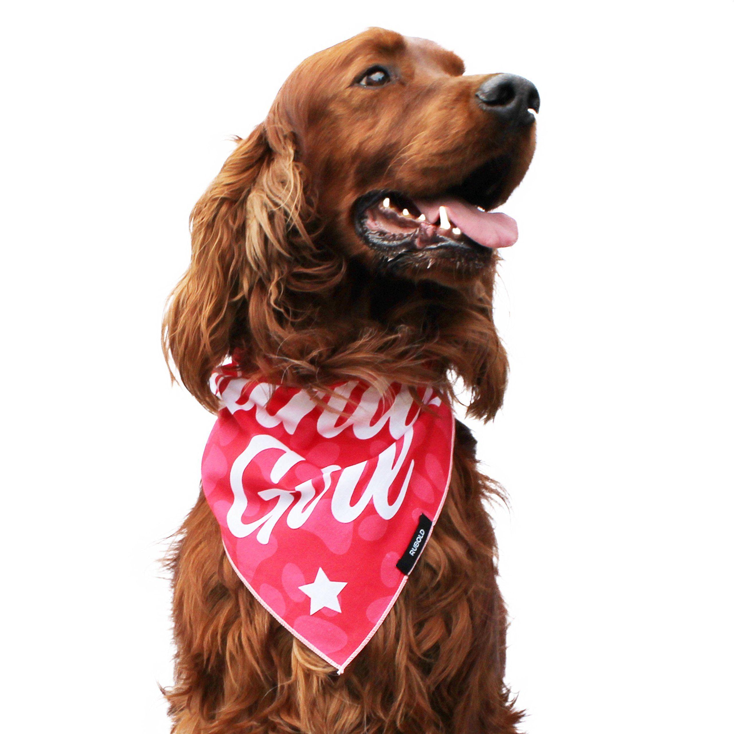 Medium Good Dog Bandana