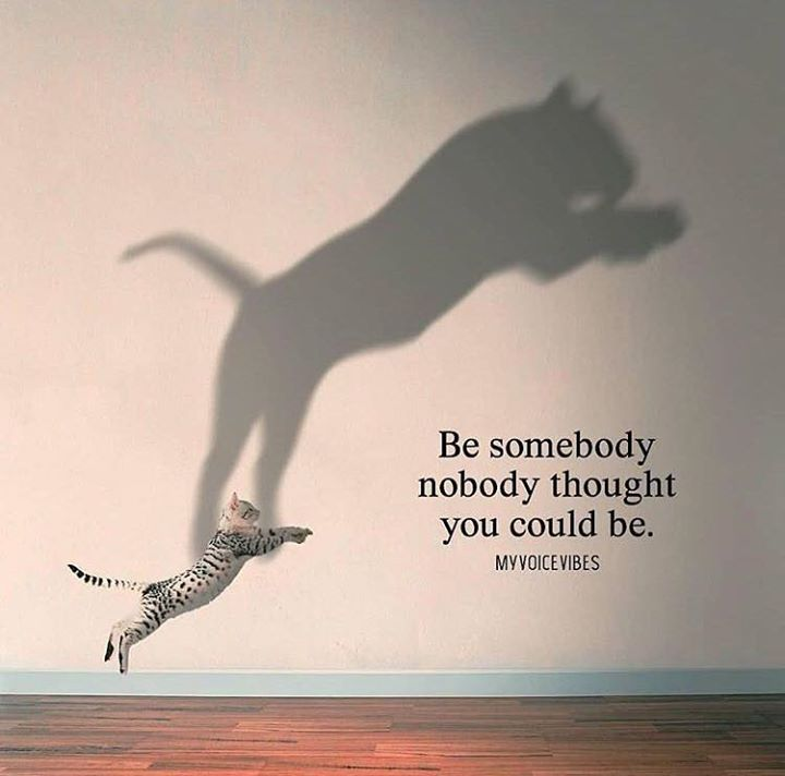 Positive Motivational Quotes Custom Be Somebody Nobody Thought You Could Be Quotes  Pinterest . Decorating Design