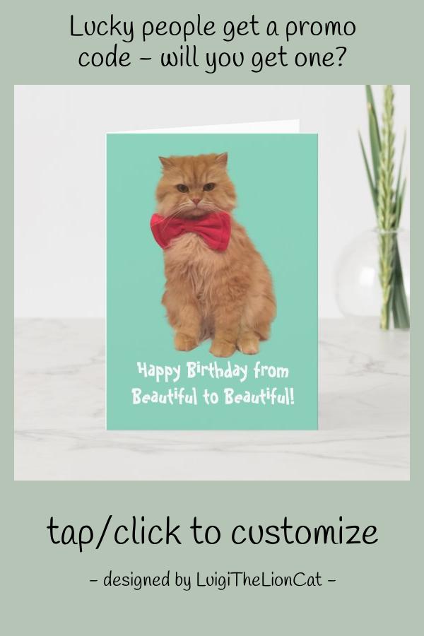 Luigi The Lion Cat Birthday Card #luigithelioncat #cat #persiancat #birthday #fluffy
