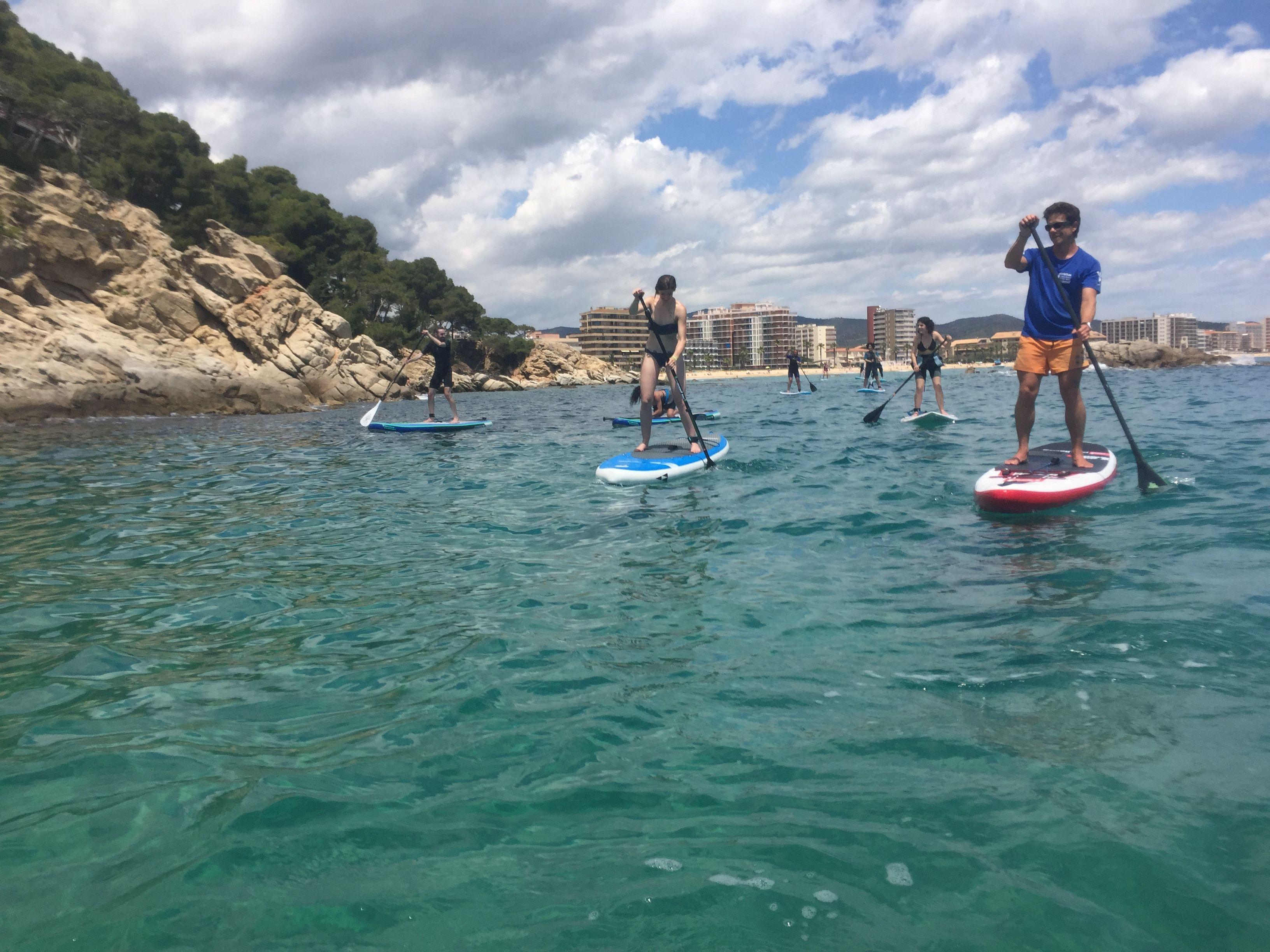 Excursión con Suricata Surf