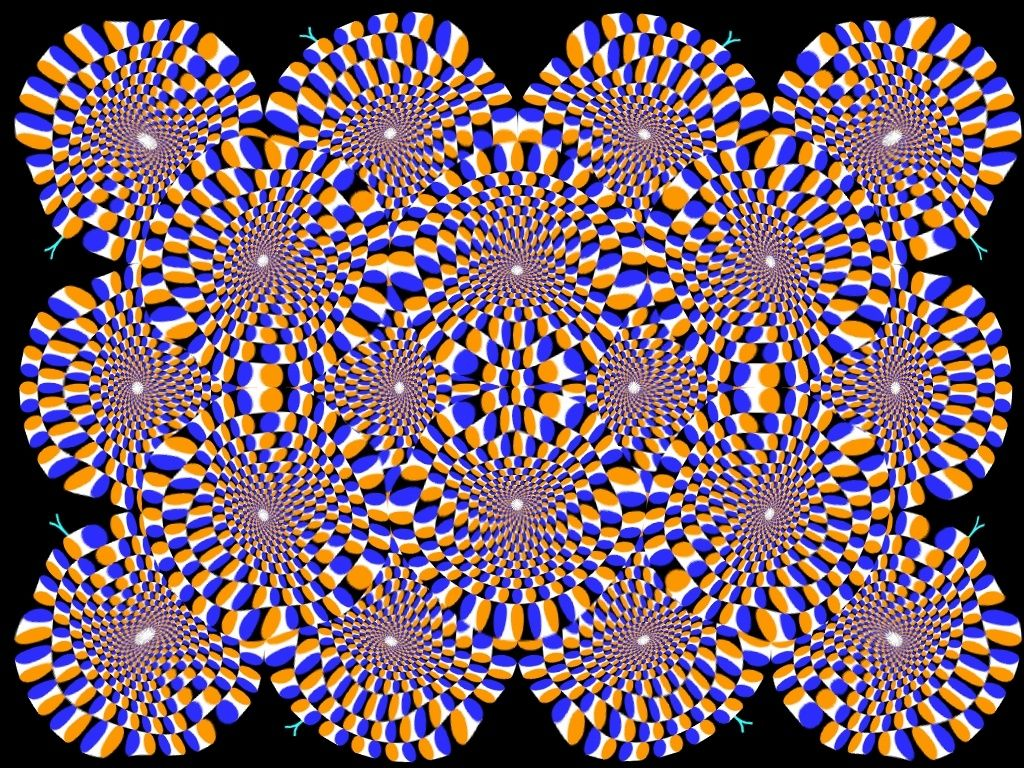 You Must Click To Enlarge And Then This Still Image Appears To