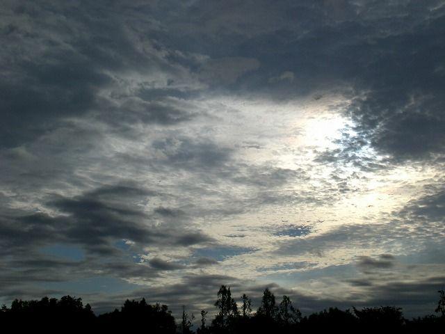 菰野町大羽根園地区 早朝散歩 台風4号去った翌朝 am6:00   平成24年6月20日撮影