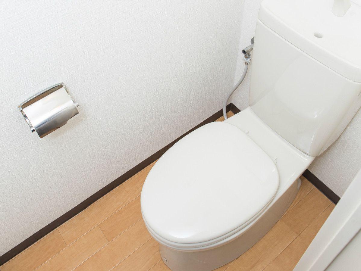 毎日のトイレ掃除 簡単 時短 節約 手間なし1分 トイレ掃除