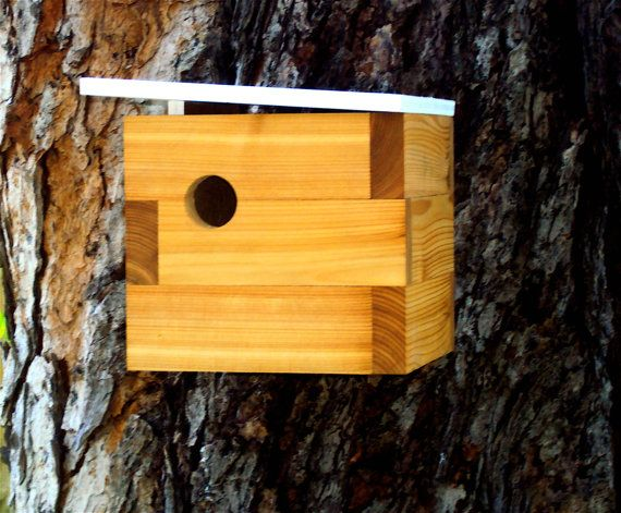 Look At These Awesome Modern Bird Houses Nathan Danials Birdhouse Designs Bird House Modern Birds