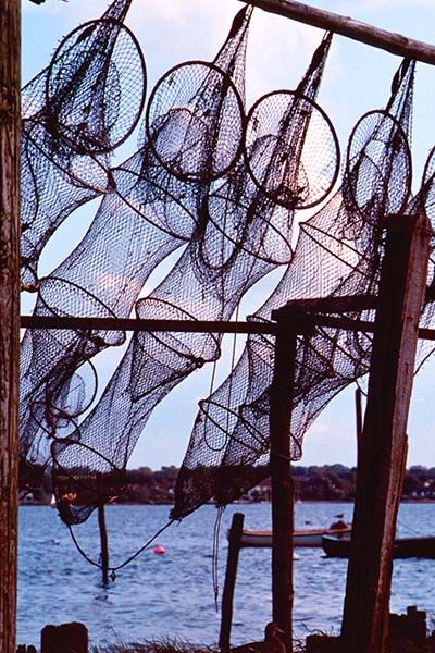 carola bARTz: Made in Germany 29 - Fish Traps