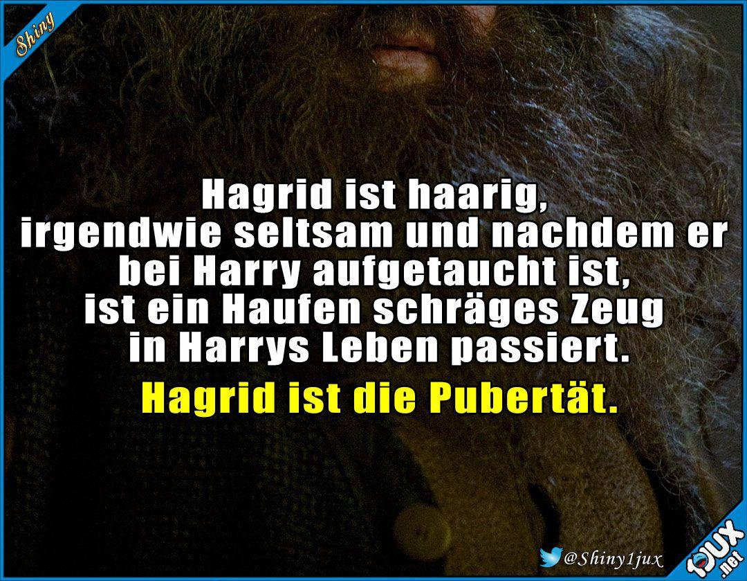 So Hab Ich Das Noch Nie Gesehen Mit Bildern Harry Potter Lustig Harry Potter Spruche Zitate Aus Harry Potter