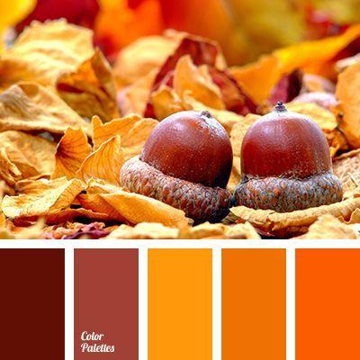 bright orange color, color for room decoration in Halloween, color ...