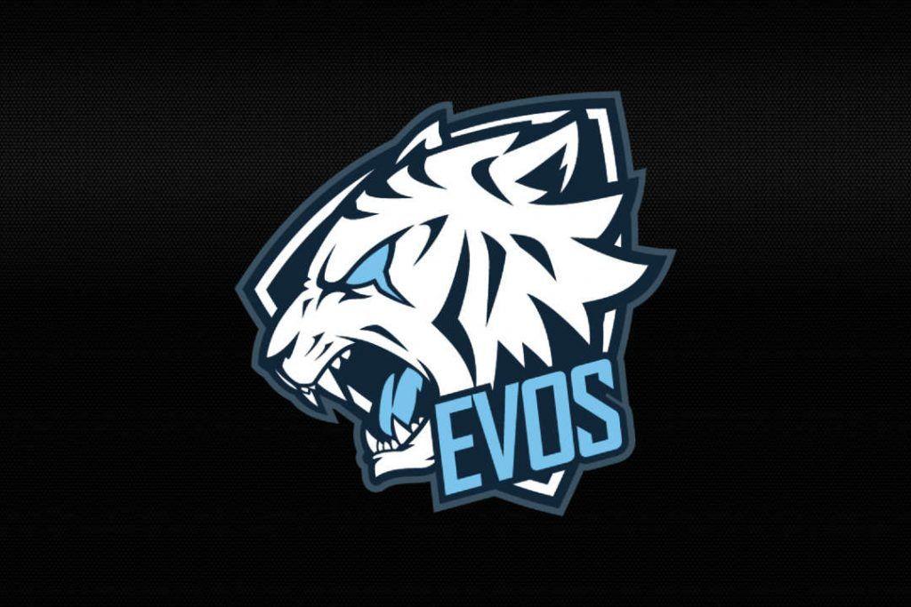 Evos Reborn Rebranding Baru Divisi Pubgm Evos Esports Di 2021 Gambar Keren Desain Logo Game Gambar Cool evos logo wallpaper