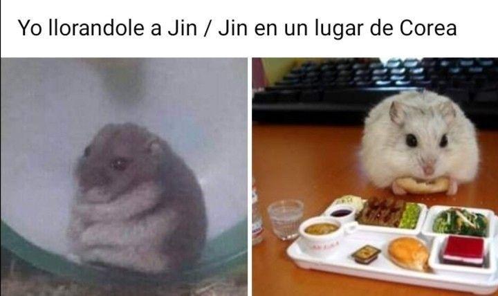 Meme Fuck Yea Japiro El Amor Mejor Me Pongo A Estudiar 2718028