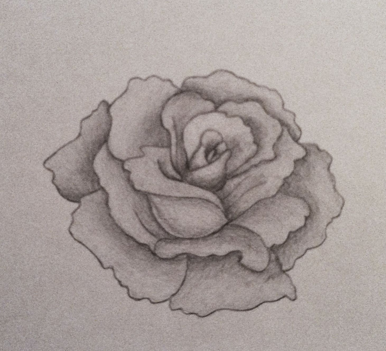 Pencil shaded flower Sketches, My drawings, Pencil shading