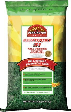 Kentucky 31 Tall Fescue Grass Seed 50 Lb Bag 59 99 Han Farm Company Lawn Pasture And Turf