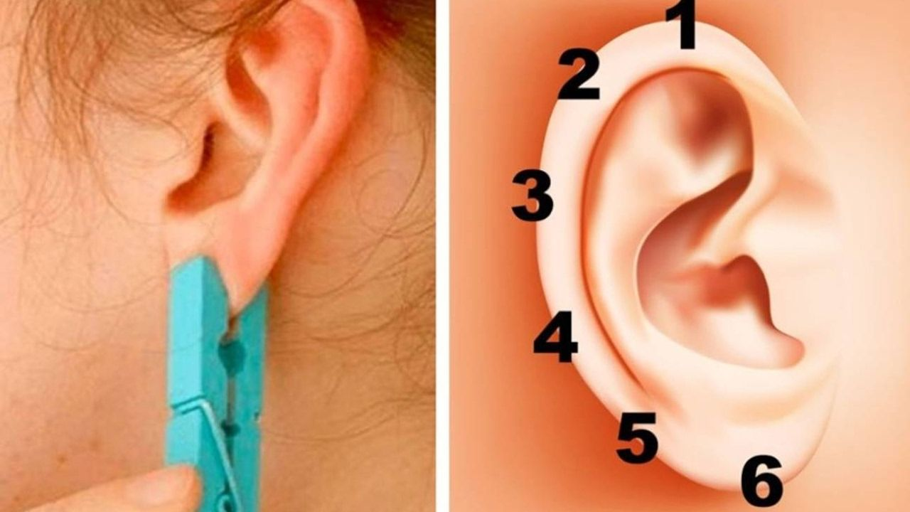 Body piercing areas  Put a Clothespin On Your Ear For  Seconds There are  different
