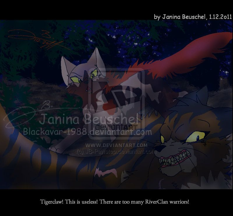 Into The Wild Warriors Book: Into The Wild -Sunningrocks Fight By JB-Pawstep On